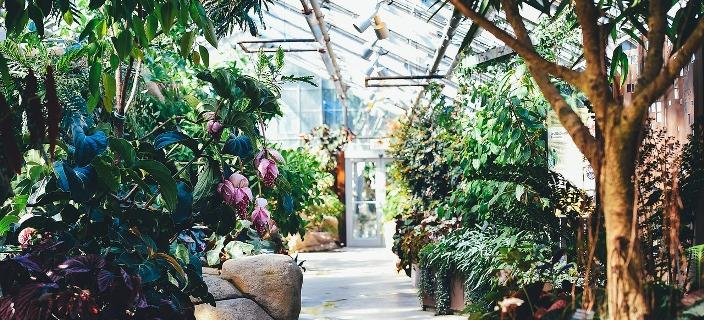 expo_plantes_bandeau