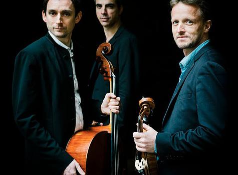 Le Trio Surel